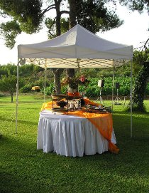 Gazebo Hire in Garden  used for Party Reception Area with a Buffet Table