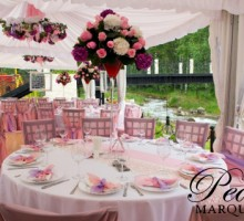 Fuscia Themed Marquee Decoration
